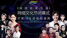湖南省第五届网络文化节闭幕式
